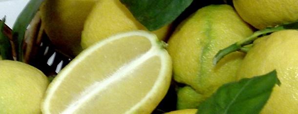 limone interdonato sicilia